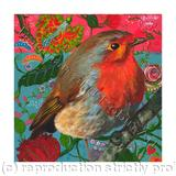 robin I - Giclee Print on fine art paper