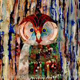 Wise Owl? - Acrylic collage