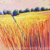 Summer Fields Sunset - Acrylic
