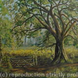 A Gate in the Forest - Oil on Canvas
