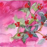 Winter berries - Watercolour