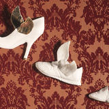 flying shoes - bone china and lustre