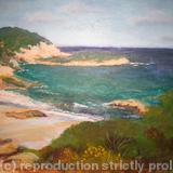 The Cornish Coast - acrylics on board