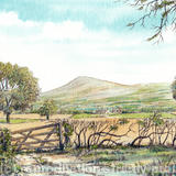 Clee Hill from the road to Craven Arms - Print on watercolour paper from pen, pencil & watercolour