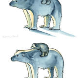 Polar bear - example of variations - watercolour on paper original
