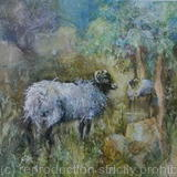 Sheep - Watercolour with texture 