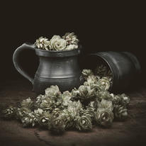 hidden Hop and Jug by Roy Matthews