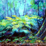 woodland with ferns - Acrylic in board