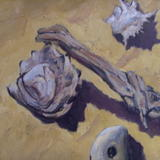 Wood and Shell - Oil on Canvas