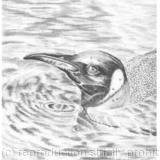 THE WATERS LOVELY - GRAPHITE