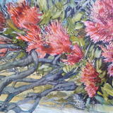 Pohutakawa at St Martins Bay. - Watercolour