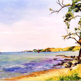 Helena Bay N.Z. - Oil on board