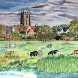 Cattle Grazing, Sudbury Water Meadows (Artist's Ref 0911CA) - Watercolour