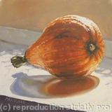 Red Kuri Squash - Oil on Canvas