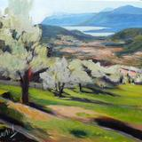 Les Ardrets Olive Grove - oili on canvas