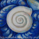 shells II - pastel on board