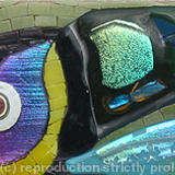 Toucan - Glass Fusions, Millefiori and Vitreous glass