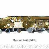 Mallard - watch parts on board