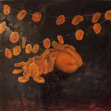 Apricot Scales - Oil on Canvas