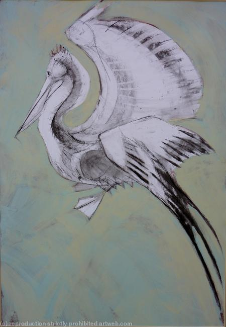 Pelican,blue